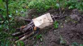 Otep listnatého dříví se sadbou hlívy zapuštěná částečně v zemi, říjen 2008, Brno Soběšice