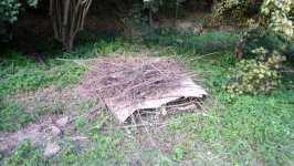 Hrubé větve dospodu, nepotištěný karton, větve, karton, kompost pro hady, září 2008, Brno Soběšice