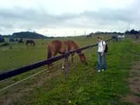 Barbara Zemanová u ohrady s koňmi