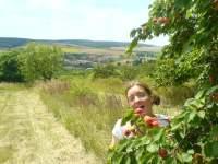 Baruška a meruňky v Morkůvkách, 2008