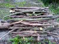 Hromada dřeva dříví na oheň palivové dříví