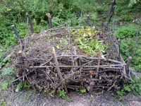 Kompost compost terriccio composta