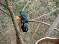 Práce na stromě, aku vrtačka Metabo odpočívá na větvi