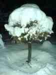 Sníh napadl v Brně 11. listopadu 2007