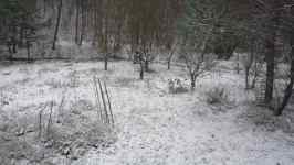 Sníh a zahrada, listopad 2008, Brno Soběšice