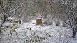 Sníh na zahradě, snow and garden, listopad 2008, Brno Soběšice