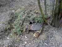 Úkryt pro drobné živočichy v zahradě