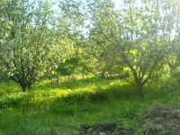 Zelená biozahrada