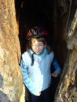 Anetka v dutině starého dubu