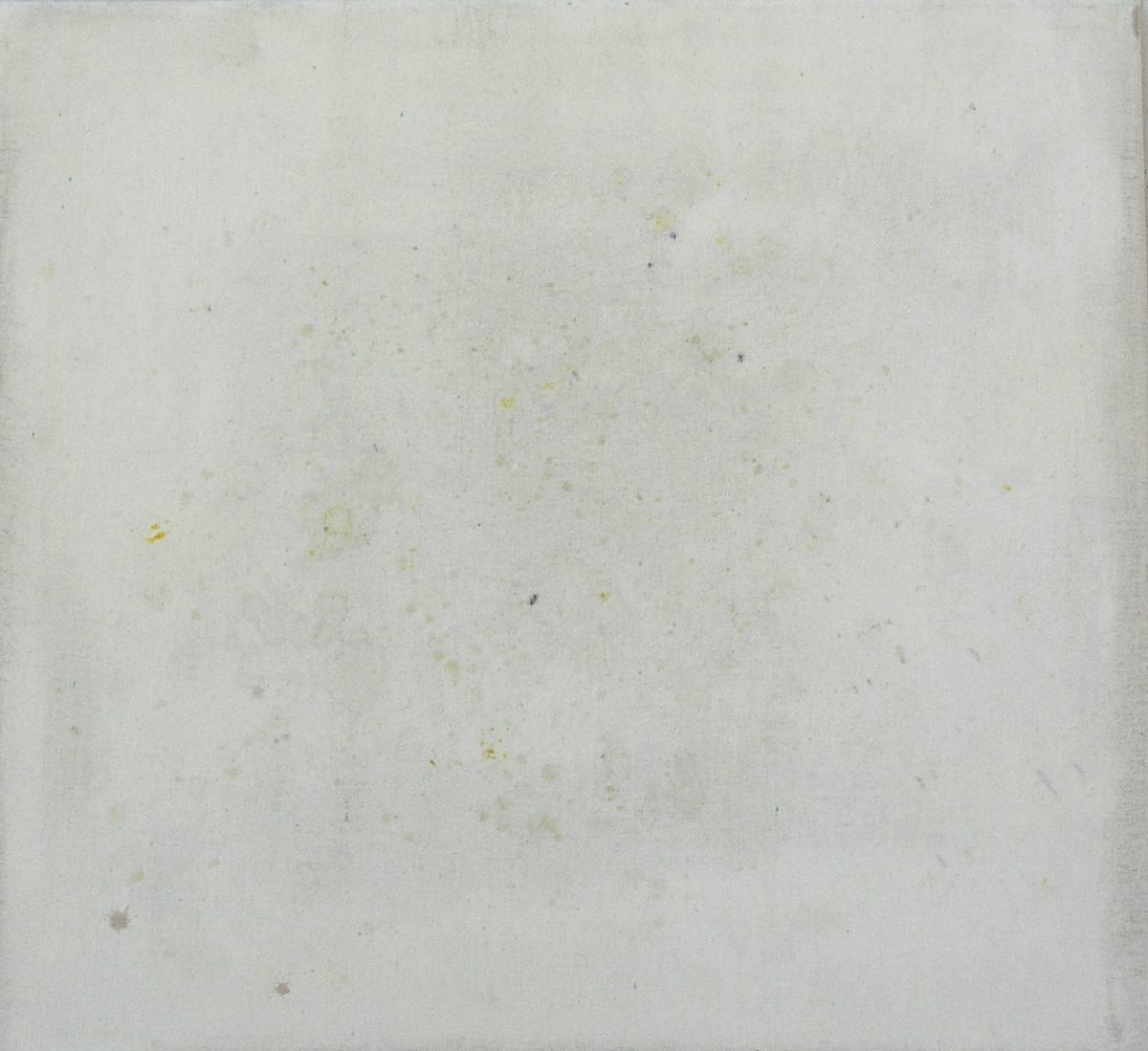 Pomeranče, přírodní pigmenty na plátně (vlastní konceptuální zadání)