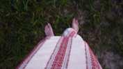 Jen deka a tělo, chladná zem, 2008