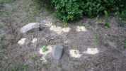 Nový přírodní záhon s kameny, 2008
