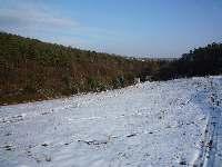 Sníh, Soběšice, březen 2009