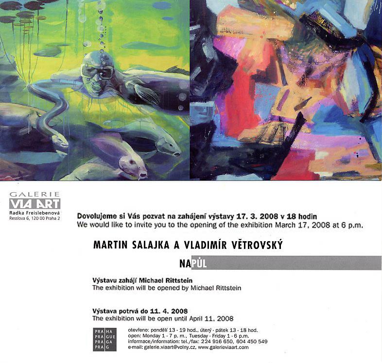 Martin Salajka, Galerie Via Art, Praha, 2008